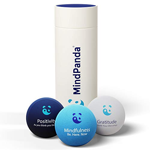 MindPanda Paquete de Bolas antiestrés 3X | Tri-Density para Terapia de Ejercicio Manual - Fragancia para un Enfoque Adicional - Afirmaciones motivacionales (Blue - Mindfulness Stress Balls)